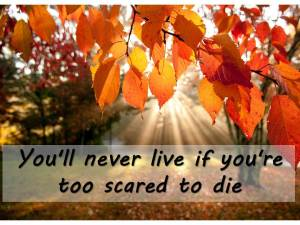 You'll never live if you're too scared to